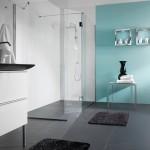 Ścianki szklane w kabinie prysznicowej AS 949